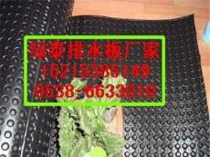 巢湖聚乙烯排水板厂家巢湖1.2公分排水板专业施工厂家