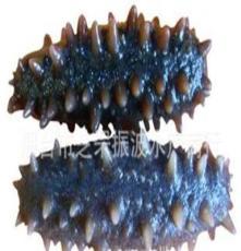 一级野生即食海参 鲜活水产品 烟台芝罘振波水产商行
