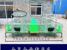 母猪产床双体猪用床新型猪用设备
