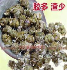 百斛堂 鐵皮石斛新鮮老盆栽種鮮條培育馴化苗