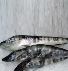 常年供应南极冰鱼生长在深海零度以下无污染水域的鱼类 图
