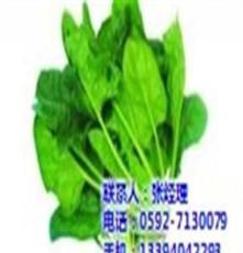 厦门地三鲜(图),蔬菜批发公司,同安蔬菜