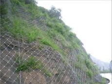 新疆克拉玛依堤坡/堤坝防护网生产厂家