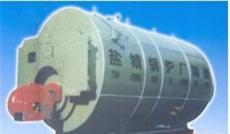 燃油燃氣余熱鍋爐