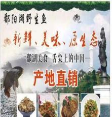 鄱陽湖野生毛刀魚火爆、農家曬干 地攤產品魚干 廠家直銷