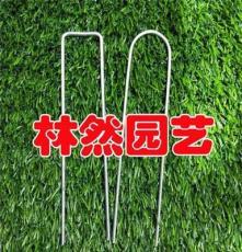 地膜固定器 斜尖设计 加硬地插钉丝网固定钉 防锈铁钉 园艺标签钉