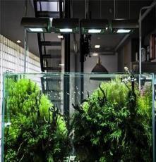 云南隔断鱼缸各种型号  昆明公司鱼缸