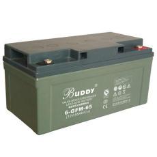 BUDDY蓄電池6-GFM-24寶迪免維護12V24AH浮充