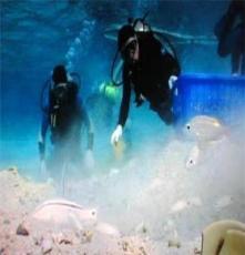 萍乡市潜水检测九江市潜水安装工程公司