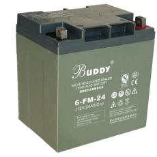 BUDDY免維護蓄電池6-GFM-24 12V24AH裝置