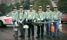 上海灭鼠灭蟑 上海白蚁杀虫