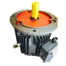 空调通风冷却塔防水专用电机 YLF112M-12