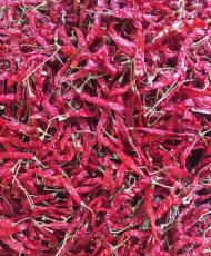 印度干辣椒进口报关所需单证