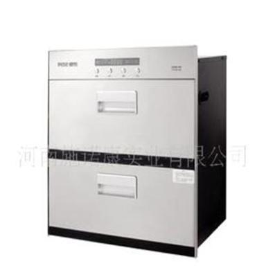 厂家直销消毒柜 嵌入式低温消毒柜YTD100E-09A