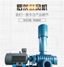 LYSR65型三叶罗茨鼓风机 增氧机 污水处理罗茨鼓风机