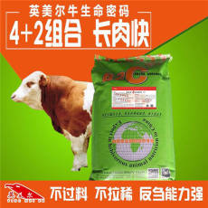 夏洛萊牛育肥牛羊速肥夏洛萊牛育肥牛羊速肥