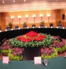长沙花卉租摆 长沙绿植租摆 会议室花卉租摆