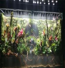 株洲/湘潭雨林缸、大型水族箱鱼缸定做维护价格案例找植来植趣
