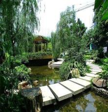 重庆源泽水生植物有限公司出售各类水生绿植水生花卉盆栽水生植物