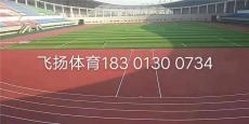 塑膠地坪彩色EPDM顆粒室外田徑橡膠跑道球場