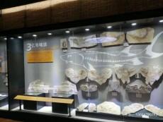 福州古董收藏館展柜廠家-平移門博物館展柜