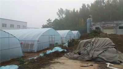 河南山西哪里有建造草莓大棚厂家公司