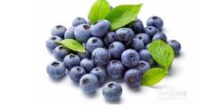 美国蓝莓饮品贴牌源头厂家