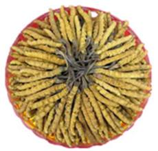 罗湖冬虫夏草回收多少钱-回收冬虫夏草价格