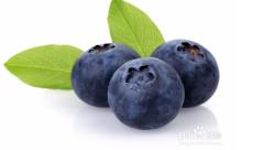美國藍莓飲品貼牌源頭廠家