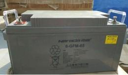 南都蓄电池6-GFM-38多少钱