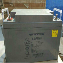 UPS蓄电池6FMX-100厂商