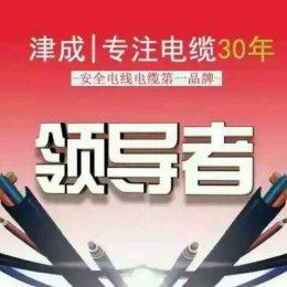 西安市津成电缆陕西总经销西安津成电线