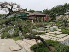 园林景观设计/园林绿化施工/东莞塘厦公司