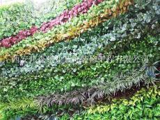 西安绿植墙厂家 室外仿真绿植墙制作