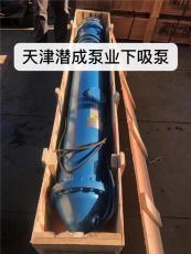 下吸泵生产厂家天津潜成泵业