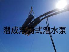浮筒式潜水泵生产厂家天津潜成泵业