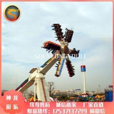 供应安全可靠极速风车游乐设施 品质保证