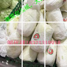 蔬菜包裝紙 蔬菜墊箱紙 蔬菜隔層吸水紙