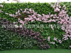 西安垂直綠化西安墻面綠化仿真綠植墻