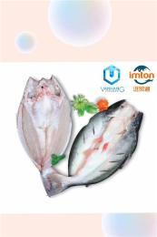 盐田港巴沙鱼进口到中国关税是多少