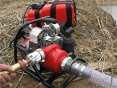 加拿大WICK250便攜式高壓消防泵 高遠程水泵