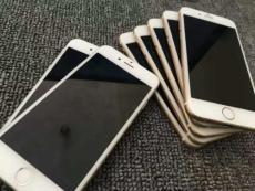 上海二手手机beplay官网全站公司重视疫情防范工作