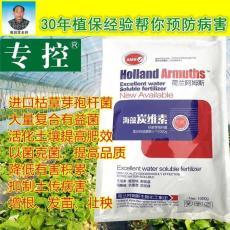 枯草芽孢桿菌提高返苗期的成活率 防根腐