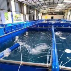 大型戶外高密度帆布魚池養魚池廠家直銷定制