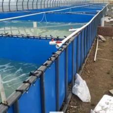廣西省戶外大型帆布魚池養魚池廠家直銷定制