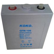 KOKO免維護鉛酸蓄電池6GFM65 12V65AH儀表