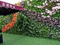 西安仿真綠植墻定做高新區綠植墻廠家