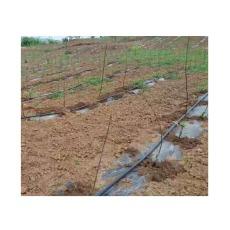 寧夏山上苗木澆樹滴灌設備批發商