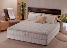 床墊除螨清洗消毒服務之床墊該除螨清洗啦