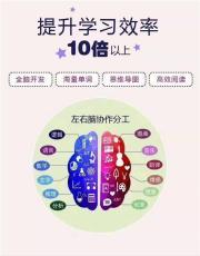 教育改革给全脑潜能开发项目发展商机